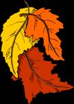 11122011 leaves