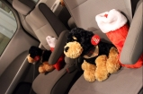 Stuffed puppies and Christmas stockings awaited Brandi's four children on the van's seats.