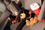 Stuffed puppies and Christmas stockings awaited Brandi's four children on the van's seats.