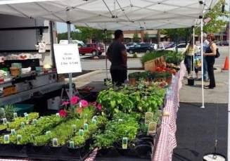 farm market 3