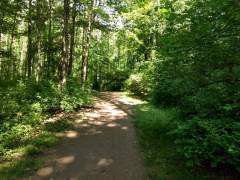 Along the Bird Sanctuary Trail